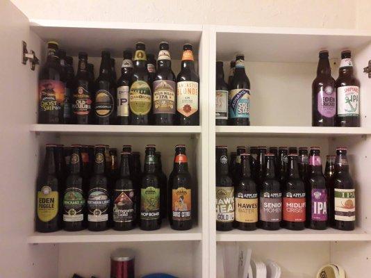 bottlescape.jpg